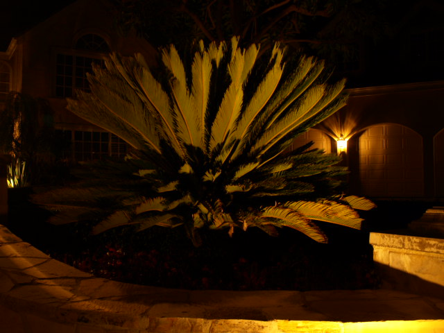 simi valley landscape lighting